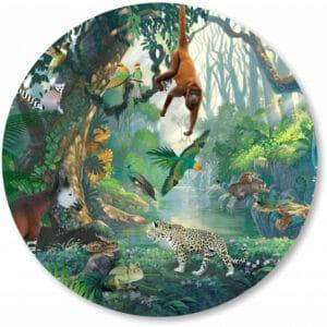 Basisbestand-vormen_0024_rainforest.png