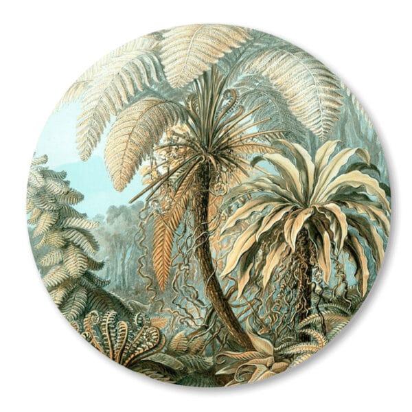Palmboom_wandcirkel_muurcirkel-Jungle-Haeckle.png
