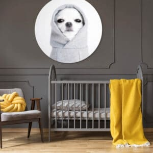 Hoody-Doggy-volgfoto1.jpg