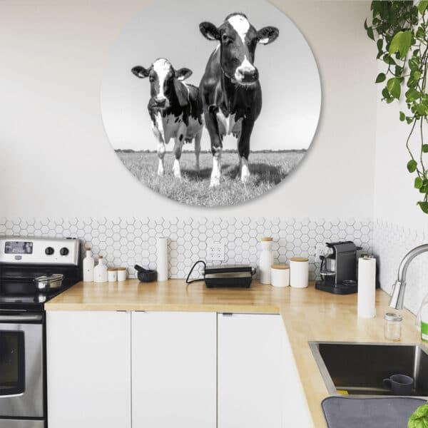 Koeien-zw-volgfoto2.png