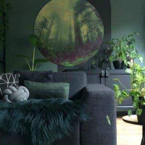 Misty-Jungle-Volgfoto-_.jpg